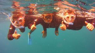 Snorkeling-Los Cristianos, Tenerife-Snorkeling excursion near Los Cristianos, Tenerife-5