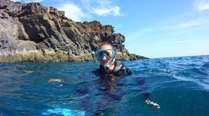 Snorkeling-Los Cristianos, Tenerife-Snorkeling excursion near Los Cristianos, Tenerife-3
