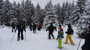 Snowshoeing-Bagenelles ski resort-Snowshoeing excursion in Grand Brezouard, Vosges-1