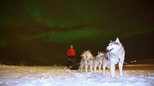 Dog sledding-Akureyri-Dog sledding excursion in Akureyri-6