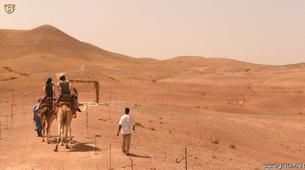 Quad biking-Marrakech-Camel and buggy or quad biking excursions in Palmeraie, Marrakesh-6