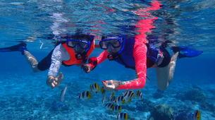 Snorkeling-Bora Bora-Snorkeling sur l'île de Bora Bora-1