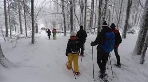 Snowshoeing-Bagenelles ski resort-Snowshoeing excursion in Grand Brezouard, Vosges-2