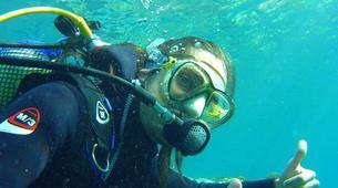 Plongée sous-marine-El Médano, Tenerife-SNSI Open Water Course in Los Abrigos near El Medano-4