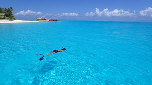 Snorkeling-Bora Bora-Snorkeling sur l'île de Bora Bora-6