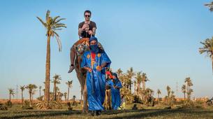 Quad biking-Marrakech-Camel and buggy or quad biking excursions in Palmeraie, Marrakesh-2
