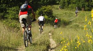 Mountain bike-County Wicklow-Mountain biking excursion in the Wicklow Mountains National Park-3