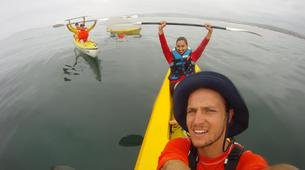 Sea Kayaking-Plettenberg Bay-Sea kayaking and dolphin discovery in Plettenberg Bay-3