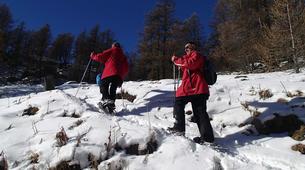 Snowshoeing-Chamonix Mont-Blanc-Snowshoeing excursion in Saint-Gervais Mont Blanc-1
