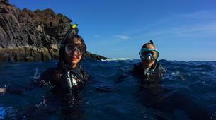 Snorkeling-El Médano, Tenerife-Snorkeling excursion near El Medano, Tenerife-1