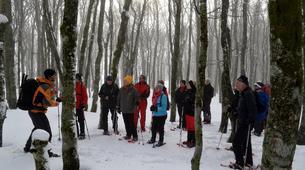 Snowshoeing-Vosges-Night snowshoeing excursion to the Donon, Vosges-4