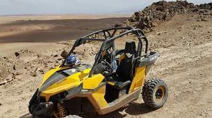 Quad biking-Marrakech-Camel and buggy or quad biking excursions in Palmeraie, Marrakesh-1
