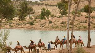 Quad biking-Marrakech-Camel and buggy or quad biking excursions in Palmeraie, Marrakesh-4