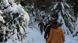 Snowshoeing-Vosges-Night snowshoeing excursion to the Donon, Vosges-3