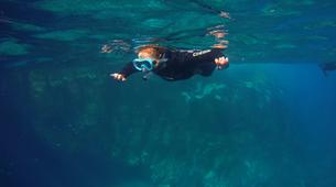 Snorkeling-Los Cristianos, Tenerife-Snorkeling excursion near Los Cristianos, Tenerife-6