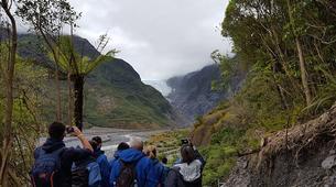 Hiking / Trekking-Franz Josef Glacier-Glacier Valley Hike in the Waiho River near Franz Josef Glacier-5