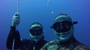 Apnée-El Médano, Tenerife-Apnea Academy Level 1 Freediving course in Los Abrigos near El Medano, Tenerife-4