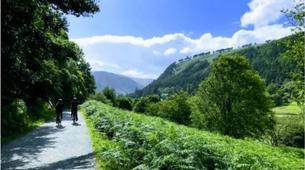 Mountain bike-County Wicklow-Mountain biking excursion to Glendalough, County Wicklow-4