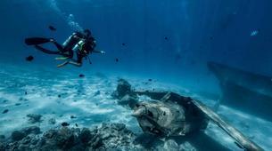 Scuba Diving-Tahiti-Adventure dives in Tahiti-3