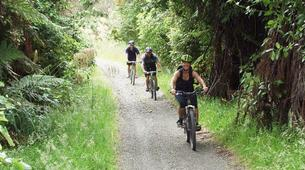 Mountain bike-Taupo-Mountain biking near Taupo-3