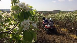 Quad-Calatafimi-Segesta-Quad biking in Calatafimi-Segesta-3