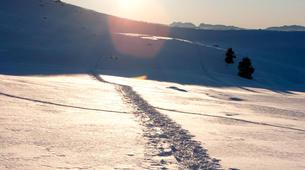 Snowshoeing-Les 7 Laux-Snowshoeing excursion in Les 7 Laux-1