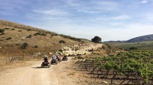Quad-Calatafimi-Segesta-Quad biking in Calatafimi-Segesta-4