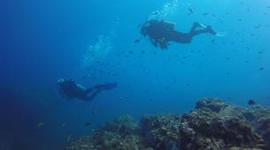 Scuba Diving-Las Catalinas-PADI Discover Scuba Diving in Las Catalinas-5