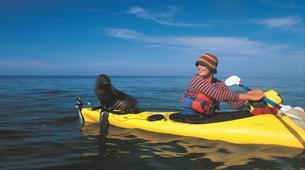 Sea Kayaking-Abel Tasman National Park-Sea kayaking excursion in Anchorage from Kaiteriteri-6