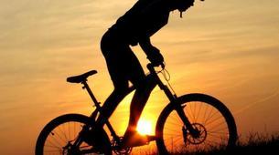 Mountain bike-Taupo-Mountain biking near Taupo-1