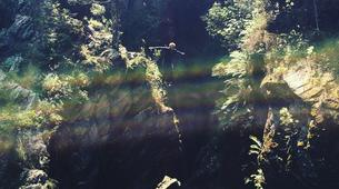 Canyoning-George-Kaaimans canyon near George, Western Cape-6