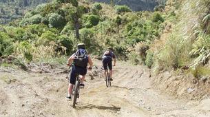 Mountain bike-Taupo-Mountain biking near Taupo-2