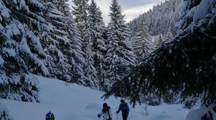 Ski touring-Flaine, Le Grand Massif-Ski touring excursion in Flaine, Grand Massif-3