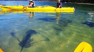 Sea Kayaking-Abel Tasman National Park-Sea kayaking and hiking excursion in Abel Tasman-6