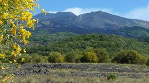 Mountain bike-Catania-Mountain biking excursions in Mount Etna from Catania-6