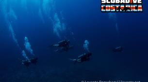 Scuba Diving-Las Catalinas-PADI Discover Scuba Diving in Las Catalinas-2