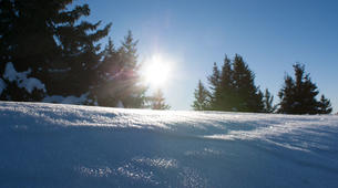 Snowshoeing-Les 7 Laux-Snowshoeing excursion in Les 7 Laux-4