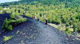 Hiking / Trekking-Mount Etna-Hiking trip to Mount Etna and the Alcantara Gorges-3