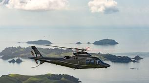 Helicopter tours-Auckland-Scenic Helicopter Flight with Waiheke Drop-Off-1