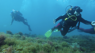 Scuba Diving-Sesimbra-SDI Open Water diving course in Sesimbra-1
