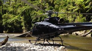 Helicopter tours-Auckland-Scenic Helicopter Flight with Waiheke Drop-Off-6