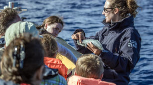 Wildlife Experiences-São Miguel-Whale Watching expedition & Islet round tour in Sao Miguel-5