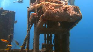 Scuba Diving-Bayahibe-PADI Scuba diving course in Bayahibe, Dominican Republic-5