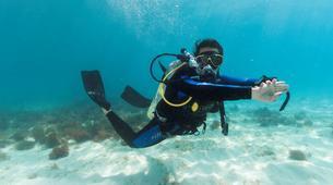Scuba Diving-Bayahibe-PADI Open Water course in Bayahibe, Dominican Republic-1