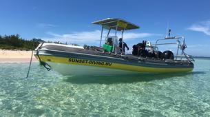 Plongée sous-marine-Grand Baie-Baptême de plongée à Grand Baie, au Nord de l'ïle Maurice-1