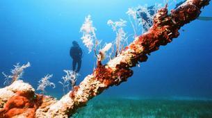 Scuba Diving-Malta-Discover scuba diving course in Malta-4