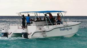 Scuba Diving-Bayahibe-PADI Open Water course in Bayahibe, Dominican Republic-4