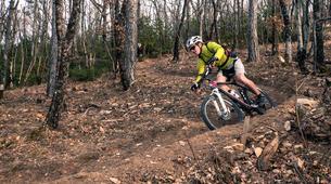 Vélo de Descente-Mont Ventoux-Descente du Mont Ventoux en VTT, Vaucluse-2