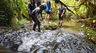 Canyoning-Tahiti-Canyon des Lavatubes à Tahiti-5