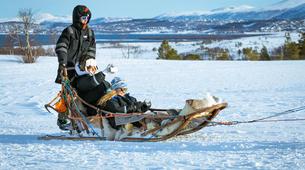 Chiens de traîneau-Tromsø-Expédition Chiens de Traîneau 2 Jours à Tromsø-4